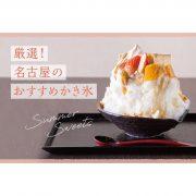 【2020年最新】名古屋のおすすめかき氷18選!エスプーマやふわふわ系も