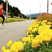 マラソンを通して、日本の美しい景色と地元の人々のあたたかさを存分に体感!